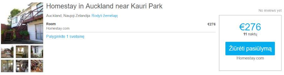 homestay-in-aukclend-near-kauri-park